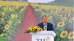 Tập đoàn TH khởi công dự án bò sữa lớn nhất vùng Đồng bằng sông Cửu Long tại An Giang