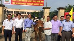 Bắc Ninh: Nghĩ ra nhiều cách hay, làm nhiều việc tốt giúp nông dân nghèo vươn lên