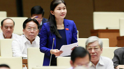 Chân dung nữ Ủy viên Dự khuyết duy nhất của Trung ương khóa XIII