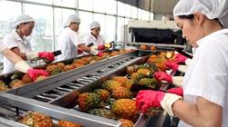 Xuất khẩu rau quả tháng 1/2021 tiếp tục giảm vì COVID-19