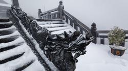 Sapa: Tuyết phủ dày 60cm trắng trên đỉnh Fansipan