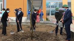 """Hội Nông dân tỉnh Bắc Ninh trồng thêm 50.000 cây xanh cho """"Hàng cây nông dân"""""""