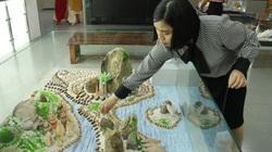 """Bộ sưu tập vỏ ốc """"khủng"""" từ Hoàng Sa, Trường Sa tại Đà Nẵng"""