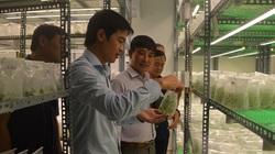 """Hội Nông dân huyện Mê Linh của Hà Nội """"rót"""" 8 tỷ đồng phát triển mô hình kinh tế tập thể"""