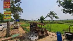 Giá đất vùng ven Hà Nội tăng dựng đứng: Quán bán gà, vịt thành trung tâm tư vấn đất đai