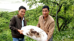 Những hình ảnh thiệt hại nặng do mưa đá, giông lốc gây ra ở Sơn La