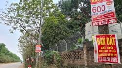 Giá đất tăng sẽ gây nguy cơ bong bóng bất động sản 2021?