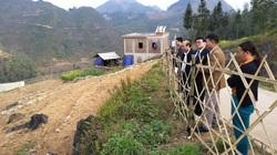 Hà Giang: Làm vườn trên đá tai mèo lạ mắt, nông dân vùng biên giới khiến nhiều người bất ngờ