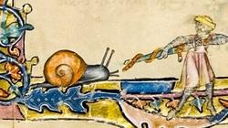Quan niệm sai lầm của người Trung Cổ khiến bạn cười ra nước mắt!