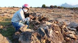 """Ninh Thuận: Bãi đá cổ hàng """"triệu năm"""" bị đào xới tan hoang"""