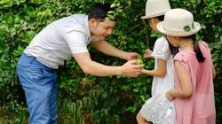 Nghệ An: Lạ đời, trai đẹp bỏ việc dầu khí ở Vũng Tàu về Nam Đàn trồng chanh, trồng chanh nhiều để làm gì?