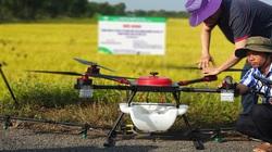 Hậu Giang: Dùng máy bay không người lái phun thuốc bảo vệ thực vật, nhà nông nhẹ công