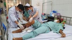 Đi làm rẫy, một người bị bò húc gãy nát xương vai, đứt cơ chân