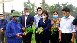 5 huyện Hà Nội sắp lên quận là những huyện nào, đều được Thủ tướng công nhận huyện nông thôn mới?