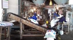 Xí nghiệp NPK 2 nỗ lực sản xuất, mỗi ngày làm ra 650 tấn phân bón Lâm Thao