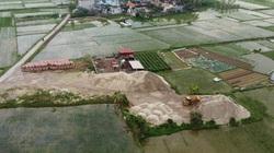 Hải Phòng: Giá đất nông nghiệp nơi cao ngất, chỗ rẻ bèo