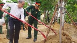 """TT-Huế: Hưởng ứng phong trào """"Mai vàng trước ngõ"""", mỗi đơn vị quân đội trồng ít nhất một vườn mai vàng"""