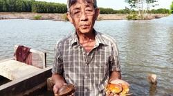 Dân phản ánh cua Cà Mau chết bất thường, Chủ tịch tỉnh chỉ đạo khẩn