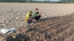 """Đồng Nai: Nhà máy mía đường """"đắp chiếu"""", người trồng mía... bỏ cuộc"""