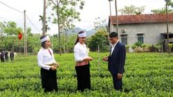 Hà Nội: Vốn ngân hàng CSXH-cánh tay đắc lực giúp  nông dân thoát nghèo ở huyện Ba Vì