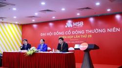 MSB đặt mục tiêu lợi nhuận 2021 tăng 30%, trình phương án tăng vốn điều lệ thông qua trả cổ tức bằng cổ phiếu