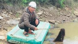 Thanh Hóa: Đem vớt thứ rau đen sì ở đầm nuôi tôm cá, chả phải chăm sóc gì mà 1ha lời ra thêm 80 triệu