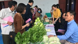 Nông dân, HTX than khó, Hà Nội mở diễn đàn Khuyến nông liên kết sản xuất, tiêu thụ nông sản