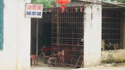 Làng buôn chó lớn nhất, giết mổ chó nhiều nhất, giàu nhất, nhì tỉnh Thanh Hóa giờ ra sao?