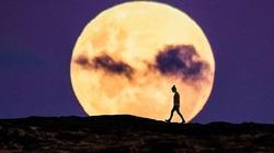 Siêu Mặt trăng tiếp theo sẽ diễn ra vào khi nào?