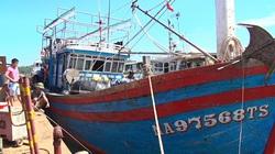 Nghệ An: 104 ngư dân vay tiền đóng tàu 67 thì có 101 chủ tàu nợ 660 tỷ đồng