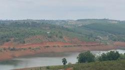 Vụ huỷ hoại rừng phòng hộ ven hồ thủy điện ở Đắk Nông: Vẫn chưa xác định được người chủ mưu