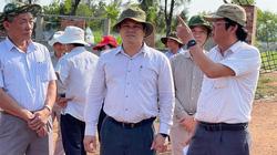 """Dự án đầu tư nông nghiệp nửa vời ở Quảng Ngãi: Tỉnh kiểm tra hiện trường, chỉ đạo """"nóng"""""""