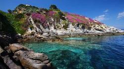 """Du lịch Italia: Sự cuốn hút của """"thiên đường ẩn giấu"""" - đảo Elba kỳ thú"""