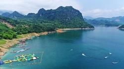 Video: Nuôi cá trên 9 tỷ mét khối nước, nông dân Hòa Bình trúng lớn