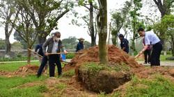 """Chủ tịch Thừa Thiên Huế đề nghị nghiên cứu tổ chức """"Festival Mai Huế"""""""