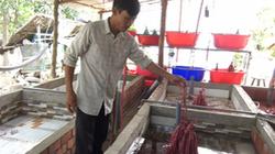 Tiền Giang: Nuôi lươn không bùn trong bể xi măng, một ông nông dân từ đời làm thuê thành ông chủ có tiền