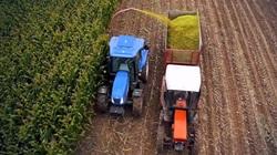 1/3 diện tích đất nông nghiệp trên trái đất có nguy cơ cao bị ô nhiễm thuốc trừ sâu