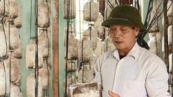 """Phú Thọ: """"Bắt"""" rơm mục, mùn cưa mọc ra cây """"siêu dinh dưỡng"""", nông dân kiếm tiền triệu mỗi ngày"""