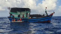Đà Nẵng: Khẩn cấp cứu ngư dân bị tời tàu cá đánh vào đầu, tính mạng gặp nguy hiểm