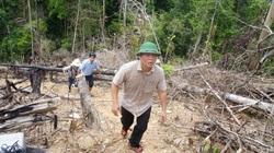 Chủ tịch UBND tỉnh Quảng Nam yêu cầu giảm bớt các cuộc họp không cần thiết