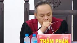 Thẩm phán Trương Việt Toàn: Nếu Bộ Công Thương ký đúng luật, đã không có tới 19 bị cáo phải hầu tòa