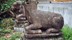 Độc - lạ hình tượng con trâu trong văn hóa Việt