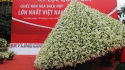 """Kỷ lục Việt bị giễu: Chưa bao giờ """"to nhất, dài nhất"""" rầm rộ như hiện nay"""
