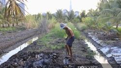 """""""Siêu đô thị"""" tỷ đô Bình Quới - Thanh Đa treo 30 năm (Bài 2): Sống khổ, làm ruộng bên sông Sài Gòn"""
