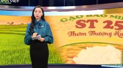 Bản tin Thời sự Dân Việt 24/4: Việt Nam liệu có mất thương hiệu gạo ST25 vào tay doanh nghiệp Mỹ?
