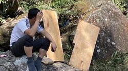 Vụ phá rừng pơ mu ở Vườn quốc gia Hoàng Liên: Tạm đình chỉ công tác hai cán bộ kiểm lâm