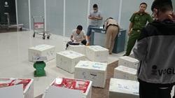 Lâm Đồng: Thu giữ 13 thùng dâu tây Trung Quốc tuồn vào Đà Lạt, sắp gắn mác dâu tây Đà Lạt bán ra thị trường