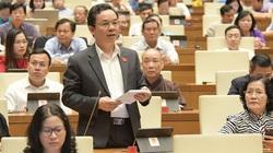 Phó Hiệu trưởng Đại học Kinh tế Quốc dân và những người tự ứng cử nào vào danh sách chính thức?
