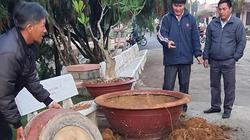 Đà Lạt: Ngang nhiên lái ô tô đi nhổ trộm hàng loạt cây hoa giấy cổ thụ trị giá hàng trăm triệu đồng