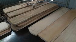 Video điều tra (Phần 3): Gỗ pơ mu từ Vườn Quốc gia Hoàng Liên đến tổng kho buôn gỗ